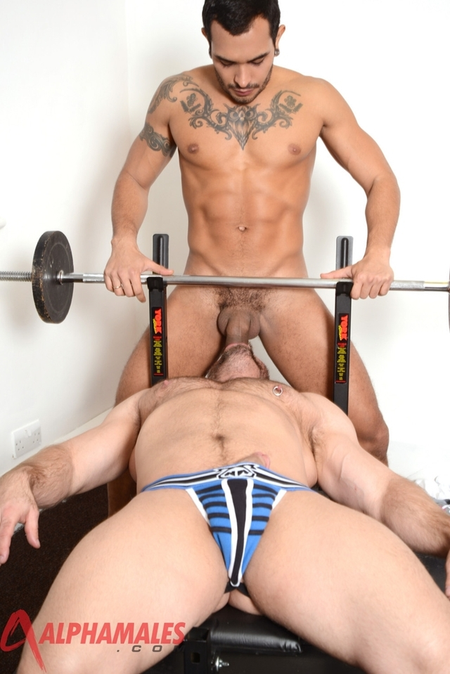 gay colt porn muscle hunk colt gallery porn video gay star photo pics man fuck ass hole alphamales lucio saints samuel