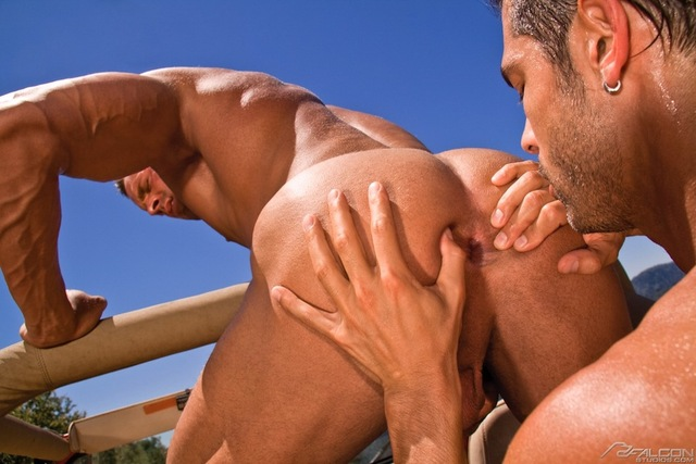gay fucking Pictures hairy studios men smooth muscular gay hardcore fucking fuck sucking rimming action hot masculine woods rugged falcon outdoor nature roughin falcons