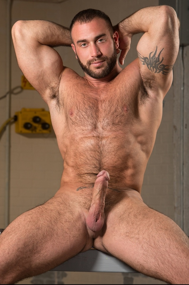 gay hairy male porn spencer reed dan tagged duong