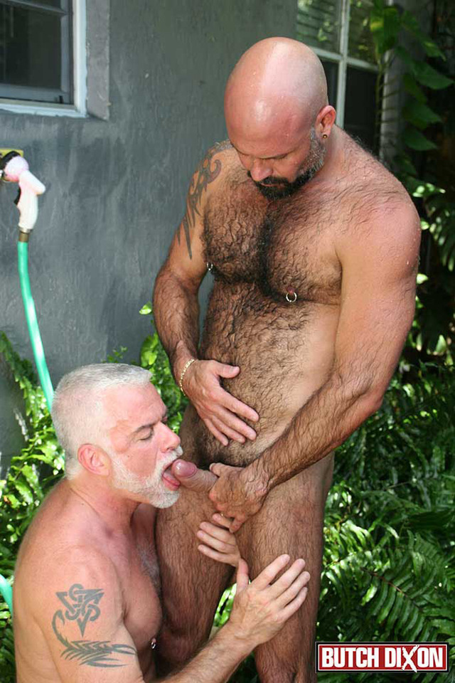 gay hairy muscular porn hairy muscle fucks jake porn his gay amateur cub daddy marco boyfriend butch dixon rios marshall silver younger