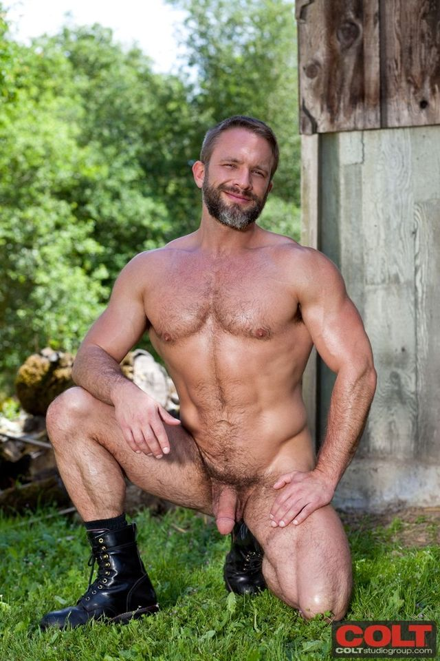 gay hairy porn pic hairy porn men gay star media pictures