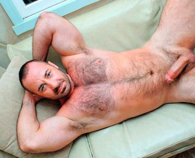 gay hairy porn pic hairy porn media pics matures