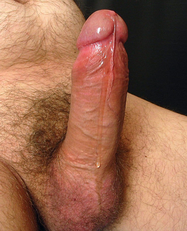 gay pics big cocks gay cocks