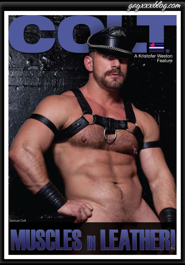 gay porn colt colt studio leather muscles dvd front