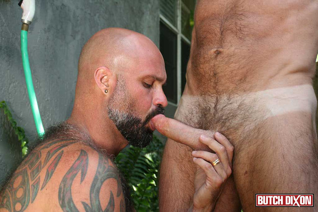 gay porn daddy Picture hairy muscle fucks jake porn his gay amateur cub daddy marco boyfriend butch dixon rios marshall silver younger
