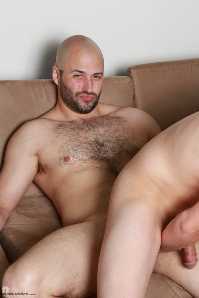 gay porn Pics hairy gallery gay pictures more