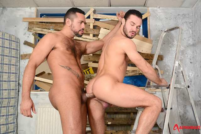 gay pron men porn men category gay fucking amateur alphamales tiko jock masculine straps jessy ares