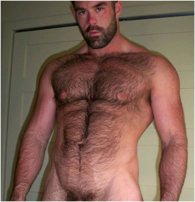 hairy gay bear sex men gay man cocks pictures bears old mature handsome hairysexy