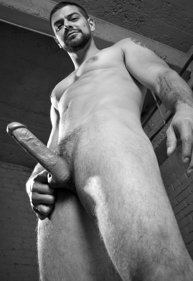 hairy gay male porn Pics hairy solo stiff lll
