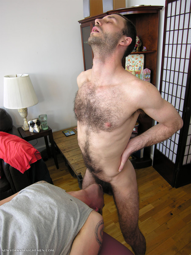 hairy penis gay porn hairy fucks men cock category page tony straight york cocksucker face