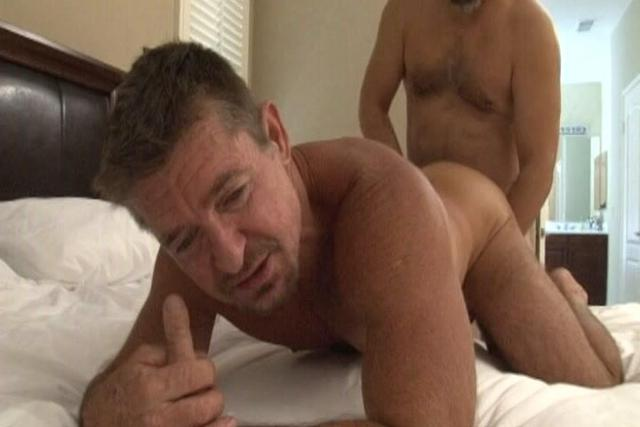 mature bear gay pics search