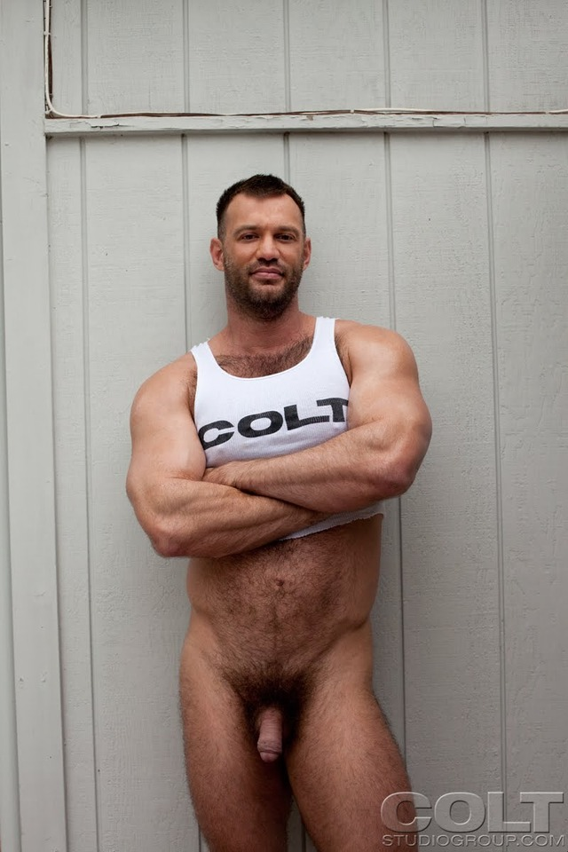 muscle bear gay porn hairy muscle colt studio group porn huge gay star bear hardcore fucking ass guy sucking bottom jockstrap masculine cage pecs gruff stuff brenden