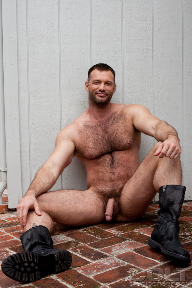 muscle bears gay porn porn gay media bears