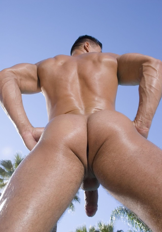 muscle gay porn clips cca