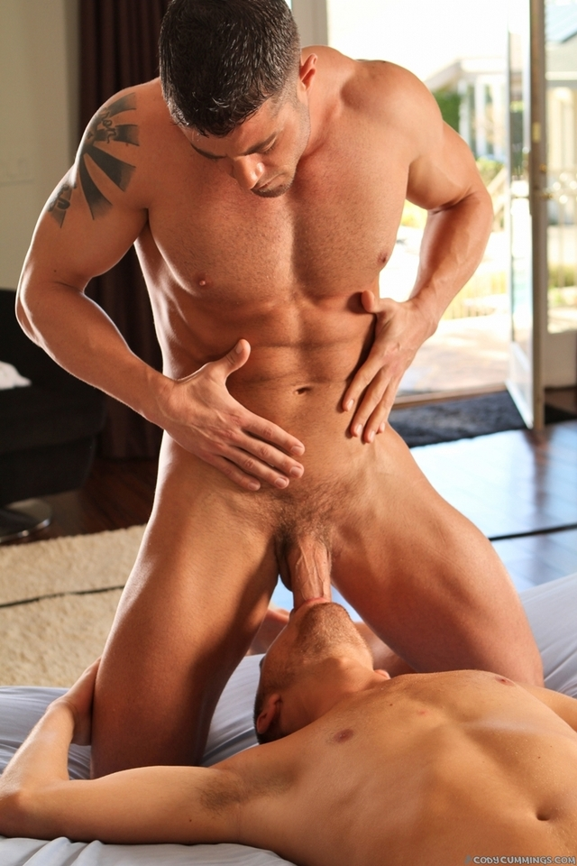 muscle studs gay porn porn media cody cummings