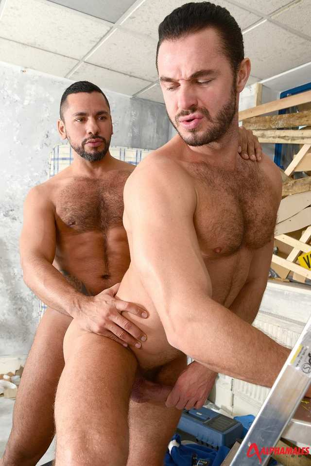 muscular hairy gay porn hairy muscle porn men blue gay fucking amateur alphamales tiko masculine jessy ares collar