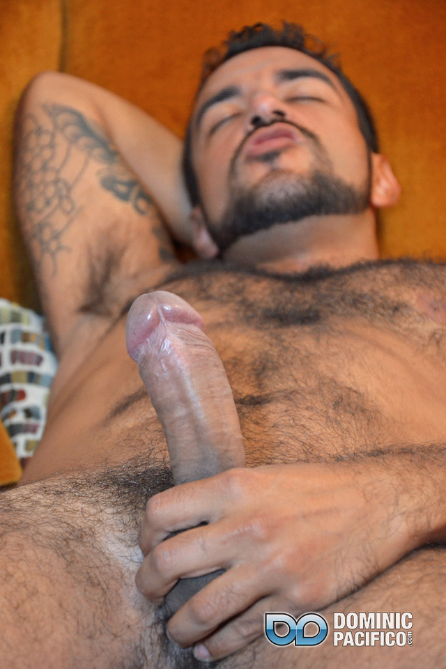 muscular hairy gay porn hairy hunk porn cock jerks huge muscular gay amateur straight out uncut masturbation cum dominic pacifico load morales nicko