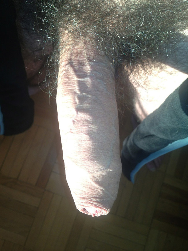pics of hairy cocks hairy dick guy hot close zoom