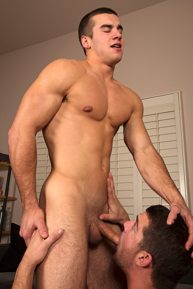 sean cody gay porn Pic porn sean day crush seancody codys adrian stu aidan