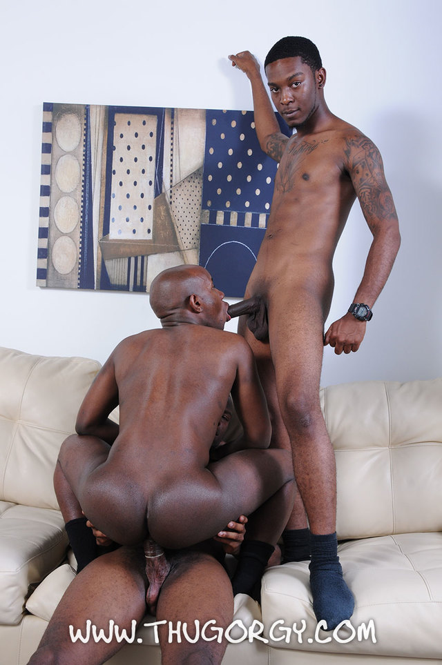 sexy black gay porn porn black gay orgy picture fucking angel ramon guys amateur free magic steel thug intrigue kash