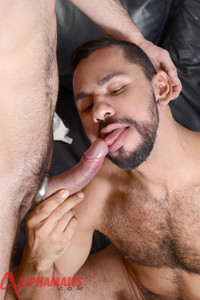 Gay Amateur Porn alphamales dolan wolf tiko foot massage latino uncut cock fucking amateur gay porn hairy muscle guys leads huge