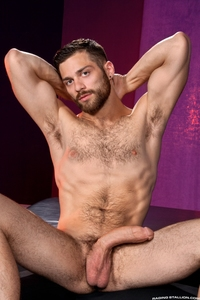 Gay porn stars Sex tommy defendi stuffs his cock seth fishers hairy ass gay porn film tight raging stallion have favorite star