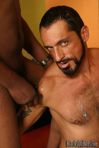 Gus Mattox Porn tom colt again pics pic muscular some gay interracial assfuck facial
