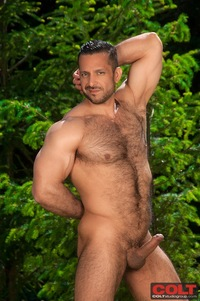 Adam Champ Porn hairy muscle bear adam champ sucks off fucks hung hunk trenton ducati ridge from colt studio group pic
