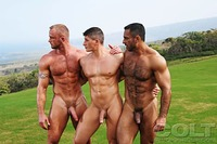 Adam Champ Porn adam champ gay threeway hawaii