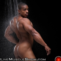 Muscled Gay Porn gallery live muscle show tyson kobie gay porn pics photo power men