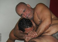Bears Gay Pics tribe upload photo photos