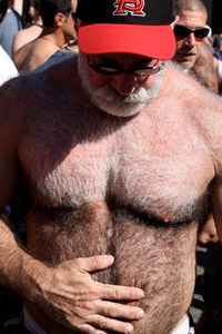 Bears Gay Pics hairy dad gay bear bears turkish