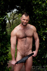 Bears Gay Pics aaron cage gay hardcore porn star muscle bear hairy huge pecs bottom ass jockstrap colt studio group gruff stuff brenden fucking sucking masculine woof alert