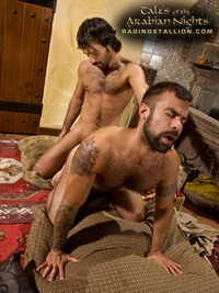 Steve Cruz Porn asc cast tales arabian nights raging stallion