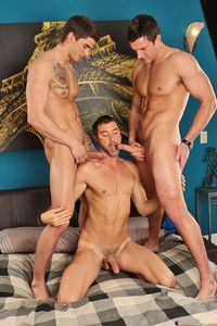 Tyler Torro Porn hung muscle studs tyler torro trystan bull justin beal suck cock fuck gay threeway short shafted from next door studios pic page