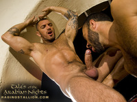 Wilfried Knight Porn fdwk cast tales arabian nights raging stallion