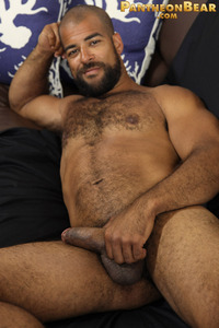 18 free gay porn caf fbf ffb muscle gay man men hairy bears porn rated jocks
