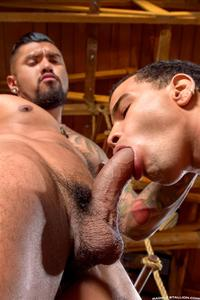 a black gay porn raging stallion boomer banks trelino huge uncut cock fucking black ass amateur gay porn young guy takes butt