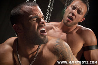 Adonis' big black cock hung muscle stud jason adonis hunk bottom damien crosse suck cock fuck hairy boyz pic