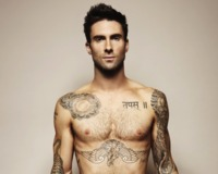 adam levine gay porn docs adam levine feat box sure gays want smell pope benedict much
