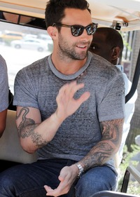adam levine gay porn levine adam talks his passion gay rights