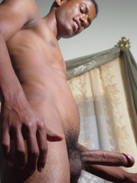 African gay porn page
