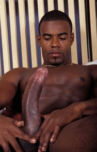 all gay porn pic reviews all gay pass black guy cock review