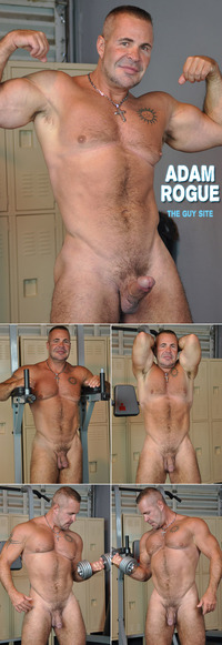 all gay porn Pictures collages theguysite adam rogue sexy beefy daddy