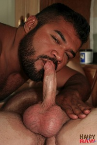 Interracial Gay Hairy Bears
