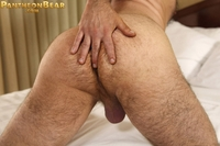 bear and boy gay porn victor west pantheon bear gay porn hairy shaved head bald thick beard hard cock meaty ass entry