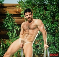 bear and boy gay porn steve kelso gay porn star colt studio group hairy hung muscle bear search