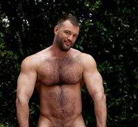 bear gay porn gallery queer cents magazine aaron cage gay porn hairy muscle cock biceps pecs foto gallery dvd nude male bear model hunk