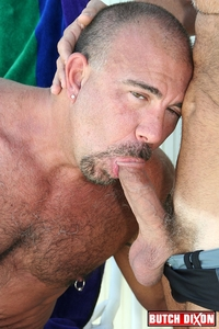 bear gay porn gallery media bear gay porn gallery dixon heads