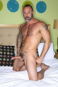 bear gay porn Pic madison teddy bear hairy tale would like call josh long gay porn